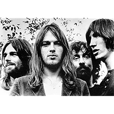 LIVE IN CONCERT COLLAGE NEW 24X36 PINK FLOYD POSTER