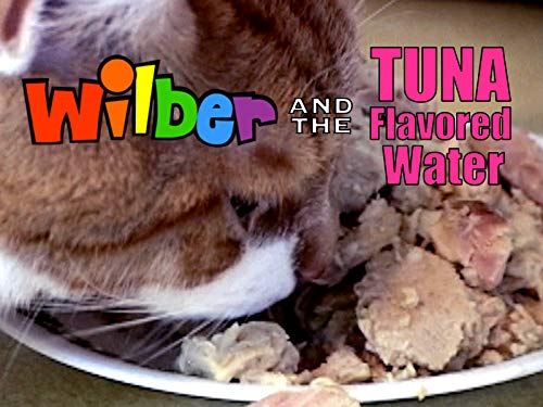 Wilber and the Tuna Flavored Water