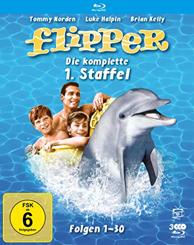 Flipper - Die komplette 1. Staffel (Fernsehjuwelen) [Blu-ray]