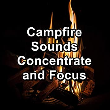 Campfire Sounds Concentrate and Focus