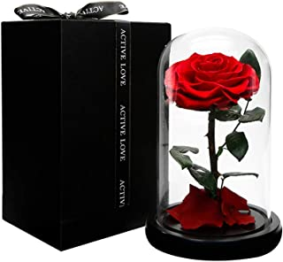 Dakotan Forever Rose -Eternal Rose with Real Fallen Petals - in Luxury Glass Dome with Wooden Base and Elegant Gift Box - Gift for Valentine's Day Mother's Day Wedding Anniversary Birthday (RED)