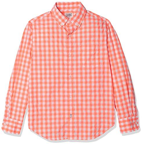 Amazon/ J. Crew Brand- LOOK by Crewcuts Boys' Long Sleeve Gingham Shirt, Orange Check, Large (10)
