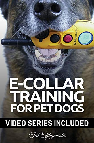 E-COLLAR TRAINING for Pet Dogs: The only resource you'll need to train your dog with the aid of an electric training collar (Dog Training for Pet Dogs Book 2)