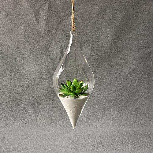 Kicode Hängende Glasvase Terrarium Hydroponic Pflanze Blume Klare Behälter Indoor Office Creative Wohnkultur