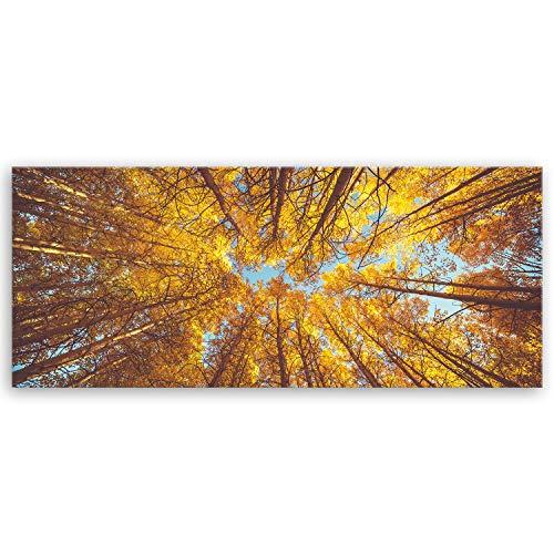Bilderdepot24 hochwertiges Panorama Leinwandbild - treetop II - Baumkrone - 100 x 40 cm einteilig 3084II