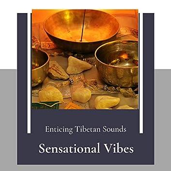 Sensational Vibes (Enticing Tibetan Sounds)