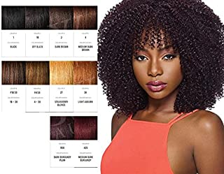 Outre Synthetic Hair Crochet Braids X-Pression Braid 3C- Whirly Loop (F1B/30)