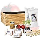 Kit di coltivazione di pomodoro con fioriera 80 x 40 cm, kit auto-coltivante iniziativa per giardino, piante naturali di pomodoro per orto urbano