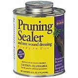 PRUNING SEALER WITH BRUSH-TOP - 912154