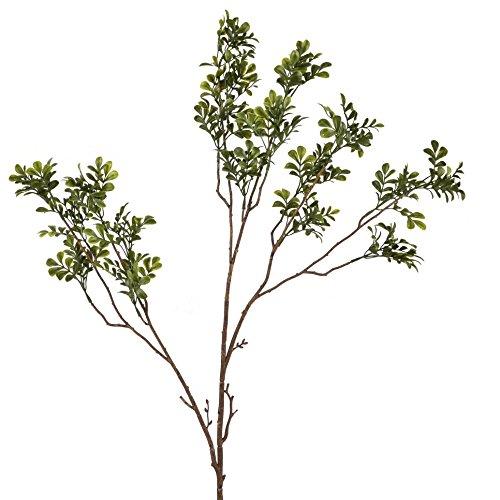 Dadeldo Living & Lifestyle Zweig Buchs Pflanze Kunstblume 80cm grün Kunstpflanze Deko