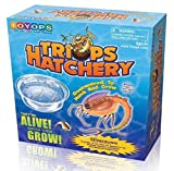 Toyops Triops Hatchery