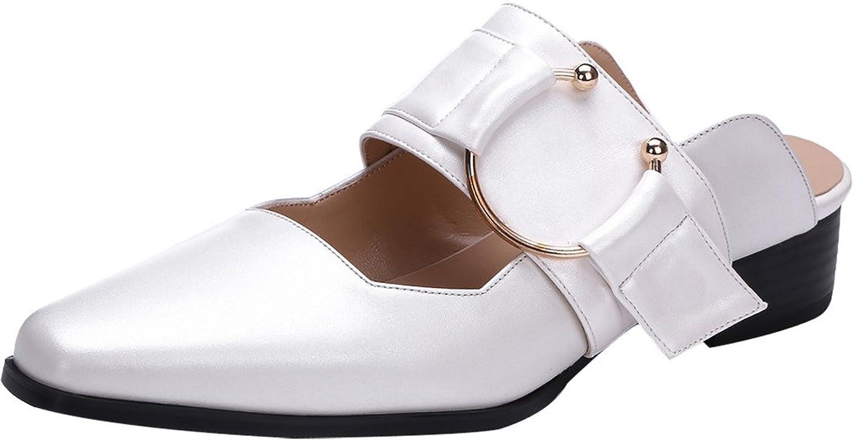 Calaier Womens Camirror Closed-Toe 3CM Block Heel Slip-on Mule shoes