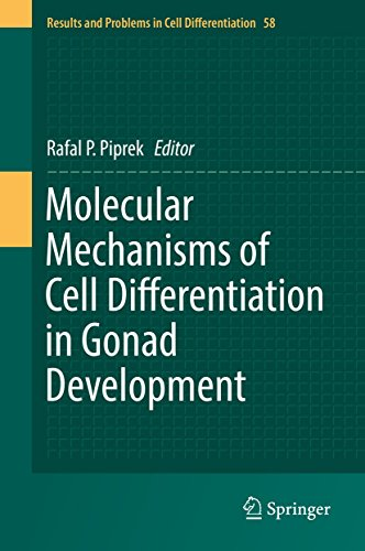Molecular Mechanisms of Cell Differentiation in Gonad Development (Results and Problems in Cell Differentiation Book 58) (English Edition)