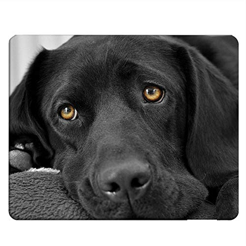 NICOKEE DogRectangle Gaming Mousepad Black lab Labrador Dog Puppy Mouse Pad Mouse Mat for Computer Desk Laptop Office 9.5 X 7.9 Inch Non-Slip Rubber