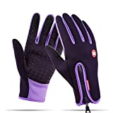 Winter Gloves Touch Screen Warm Gloves Cold Weather Windproof Cycling Driving Riding Bike Telefingers Thermal Gloves Non-slip Silicone Gel Adjustable Full Finger Mittens for Men and Women (Purple, L)