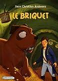 Le briquet - Rageot Editeur - 23/09/2009