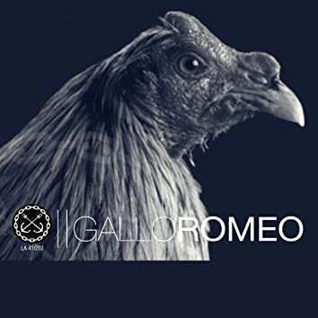 Gallo Romeo