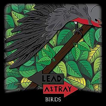 Birds (feat. Reid Richard)