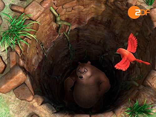 Wettkampf im Dschungel