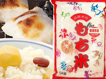 【玄米】新潟県産 白米 玄米 最高級もち米 こがねもち 5kgx2袋 令和元年産
