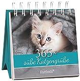 365x süße Katzengrüße: immerwährender Aufstellkalender
