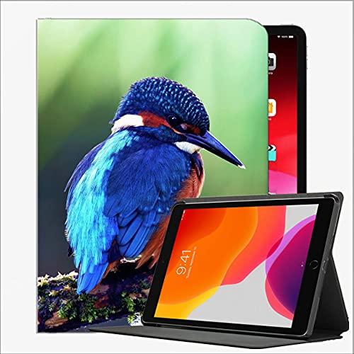 Funda de Cuero para el Nuevo Caso de la generación del iPad 8º / séptimo, el Caso del iPad 10.2, el martín pesquero común Color del Color del