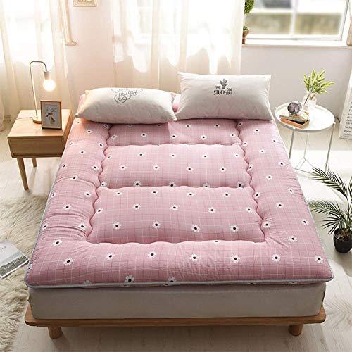 JY&WIN 10cm Tatami Mattress Futon,Super Soft Thicken Tatami Mat Foldable Mattress Breathable Warm Bed Ground Mattress Reversible-d 100x200cm(40x80inch)