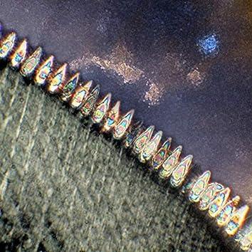 Solar Leech