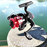 Spinning Fishing Reels,Tilife Spinning Reels Stainless Steel Small Reel Lightweight, Durable & Sturdy, Incredibly Smooth, Powerful, Ultralight Spinning Reels (red)