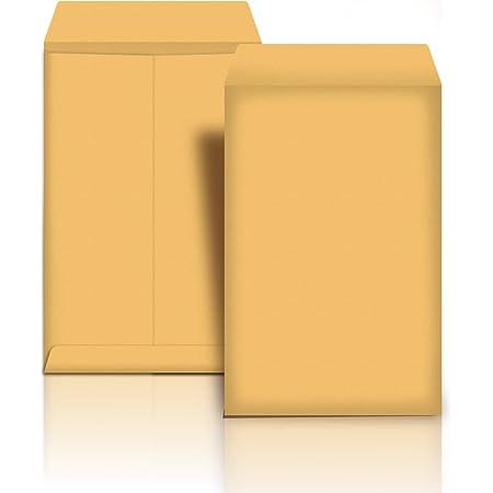 Amazon Basics Catalog Mailing Envelopes, Peel & Seal, 10x13 Inch, Brown Kraft, 100-Pack