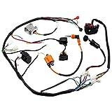 Wiring Harness Loom Key Solenoid Performance Coil Regulator CDI 150cc 200cc 250cc 300cc ATV Quad Dirt Bike