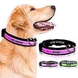Collar Perro Personalizado con LED, Collar para Perro Luminoso y Personalizado con Nombre y teléfono, Tamaño Ajustable para Perros Pequeños Medianos Grandes (S, Rosa con Nombre)