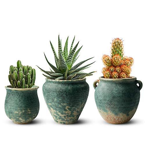 FairyLavie 4.3 Inch Ceramic Flower Plant Pots, Retro Style Garden Pot Plant...