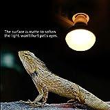 E27 Rettile Lampada Calore Lampadina Bulb Spettro Completo Riscaldamento Lampadina Luce Animale Domestico Anfibio Lampadina Riscaldante per Rettile Terrario Lucertola Tartaruga Serpente (100W)