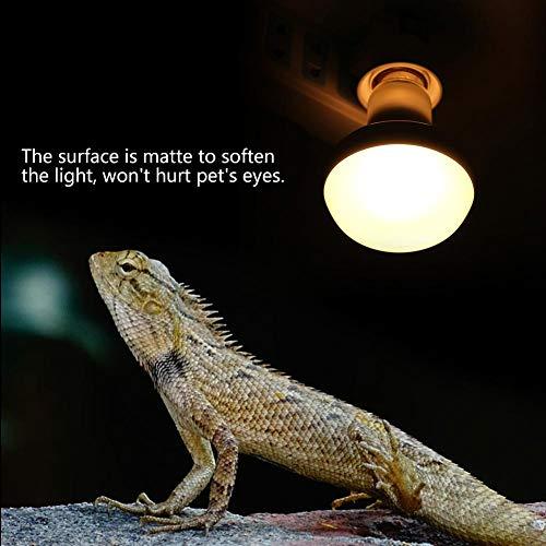 E27 Reptile Warmtelamp, gloeilamp, spectrum, complete verwarming, lamp, huisdier, ampfibië, verwarmingslamp voor reptiel, terrarium, hagedis schildpad, slang (100 W)