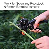 Immagine 1 jajadeal forbici innesto professionale giardino