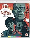 Animal Factory [Edizione: Regno Unito] [Blu-Ray] [Import]