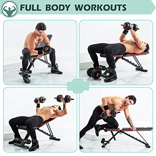 LINODI Weight Bench, Workout Bench for Home Gym, Adjustable Strength Training Benches for Full Body Workout, Multi-Purpose Foldable Incline Decline Gym Bench