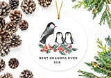 DKISEE Flat Round Shaped Ceramics Ornament Xmas Tree Christmas Decor Best Grandpa Ever Ornament, Penguins with Two Grandchildren 3.1 inch