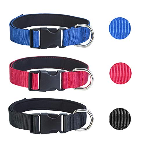 3er Hundehalsband Nylon, verstellbar für Hunde Halsband Hund Katze Welpe Hunde-Halsbänder Katzen-Halsband M/L/XL MEHRWEG