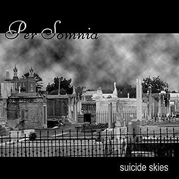 Suicide Skies