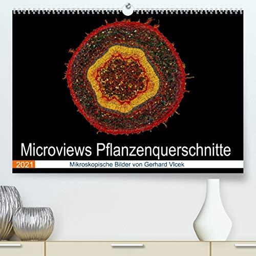 Microviews - Pflanzenquerschnitte (Premium, hochwertiger DIN A2 Wandkalender 2021, Kunstdruck in Hochglanz)