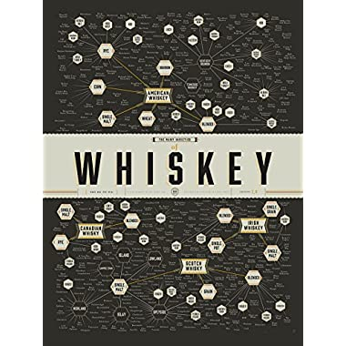 NG Whiskey Guide Types Large Poster Print 29x38 Chart Scotch Alcohol Art