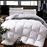 Cheeerrrs White Down Alternative Comforter Lightweight Bedding Comforters All Season-Duvet Insert Comforter with Coner Tabs-King(102x90 inches)
