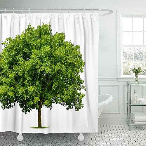 Auld-Shop Wasserdichter Raum-Großer Duschvorhang-Frischer Grüner Laubbaum Lokalisierter Reinweiß-Duschvorhang