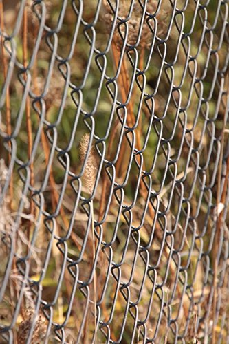 Home Comforts LAMINATED POSTER draad hek gegalvaniseerd metalen hekwerk ketting Link Poster Print 61 x 91.5