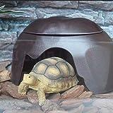 Welltobuy Reptilienhäuser