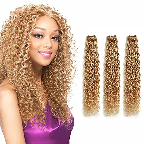 Ombre Human Hair 3 Bundles Sew in Piano Color P27/613 Bundles water Wave Weave Ombre Honey Blonde Human Hair Unprocessed Peruvian Grade 8a water Wave Bundles 20 22 24 Inch
