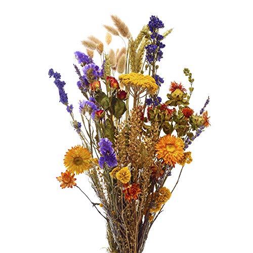 Wimble - Bouquet di fiori secchi per vasi e centrotavola per tavolo da pranzo, di qualità olandese, graziosi fiori secchi per la decorazione della tavola – Medio