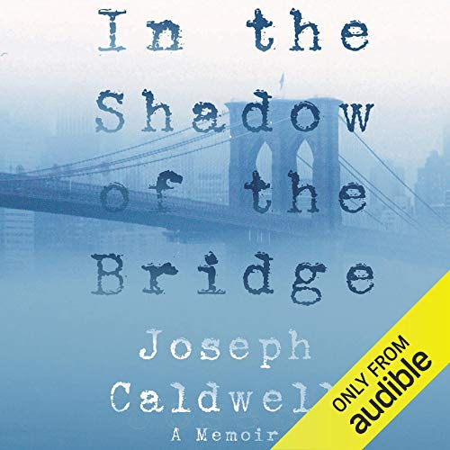 In the Shadow of the Bridge cover art